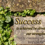 success-weakness copy