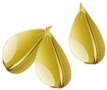 icon-seed_post (1)